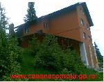 Vila Cabana Codruta